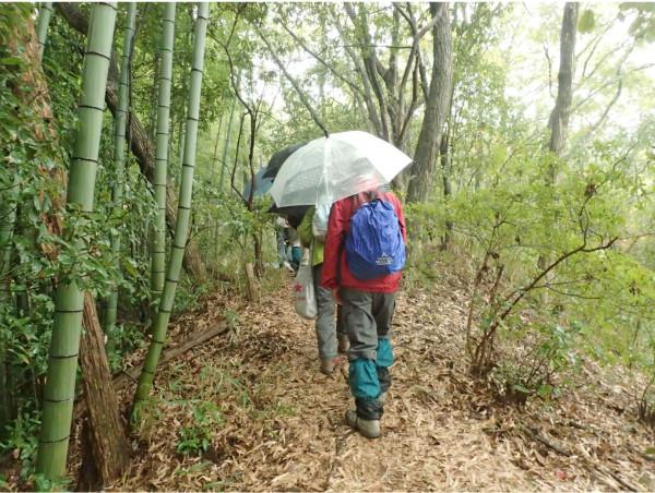「富田林の里山見学会」の様子