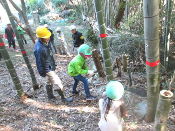 竹の伐採の実習