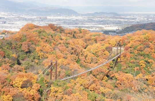 紅葉にうかぶ吊り橋