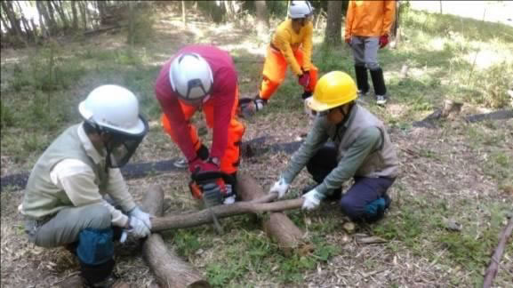 自然環境部会保全実践活動