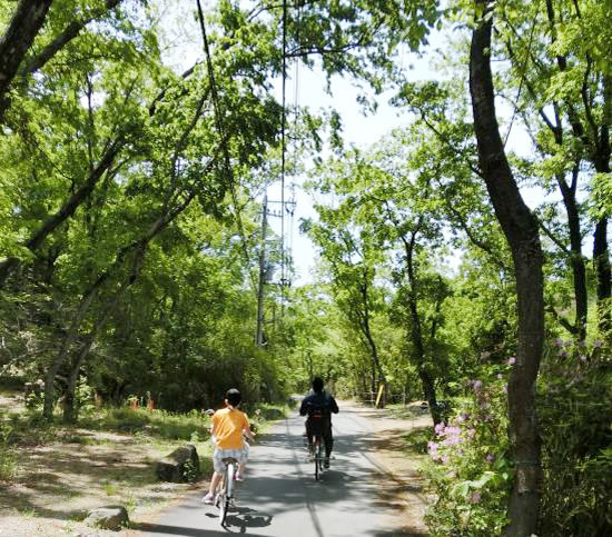 新緑の植物園へ自転車散歩 ポタリングに出かけよう!